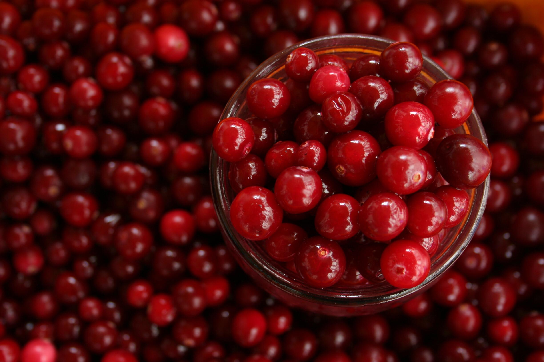 arando-tudo-o-que-precisas-de-saber-sobre-frutos-vermelhos