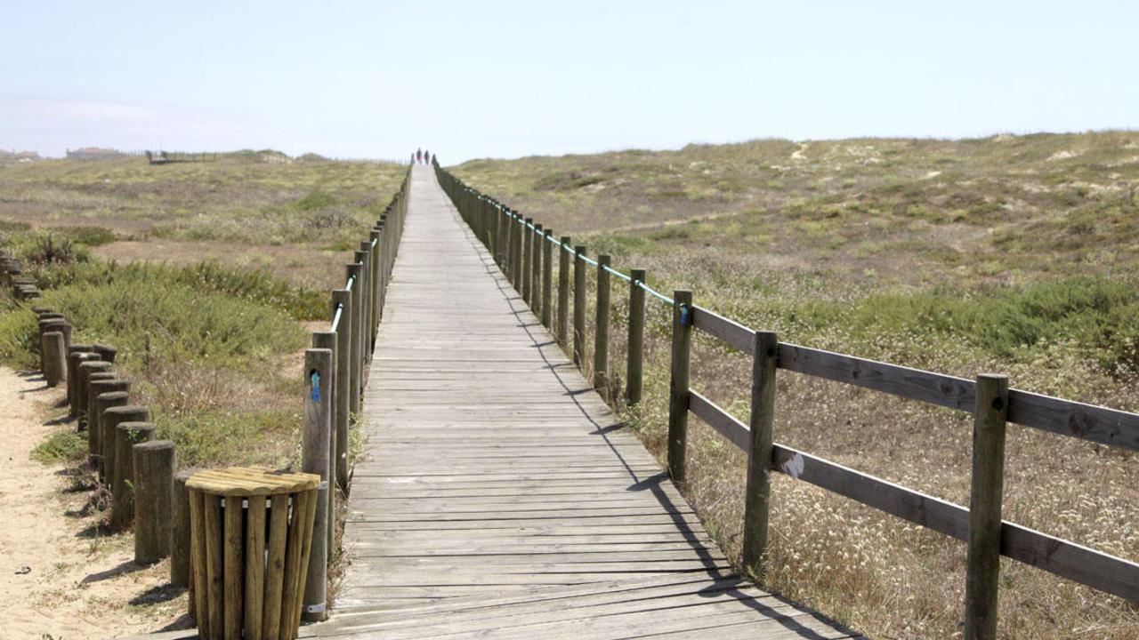 os-passadiços-mais-incríveis-em-portugal-passadiço-das-papeleiras