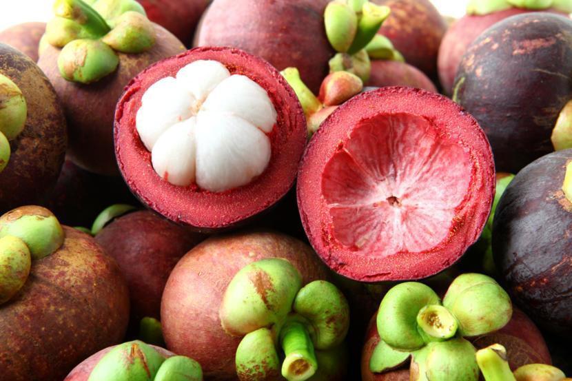 mangostão-tudo-o-que-precisas-de-saber-sobre-frutos-vermelhos